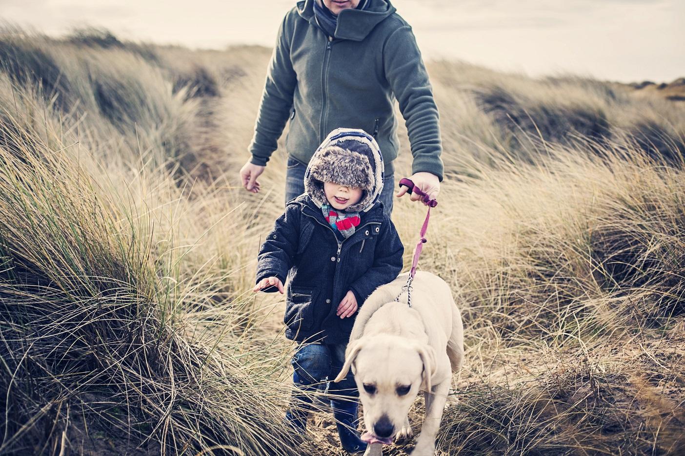 10 choses à savoir pour assurer votre animal de compagnie