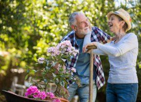 Réforme des retraites Mon Guide Retraite